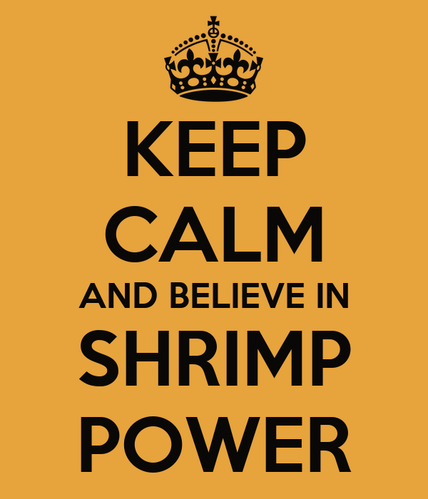 KEEP CALM AND BELIEVE IN SHRIMP POWER