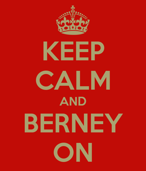 KEEP CALM AND BERNEY ON