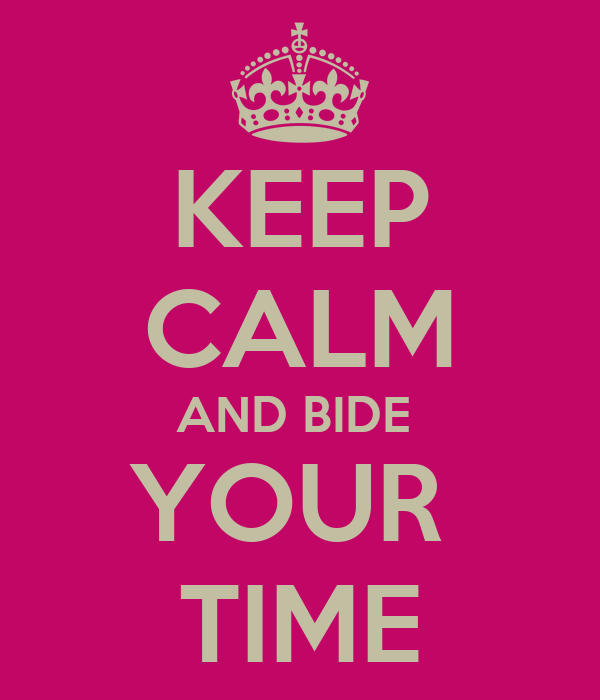 KEEP CALM AND BIDE  YOUR  TIME