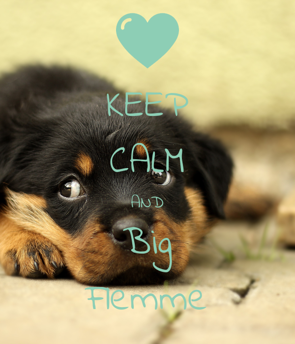 KEEP CALM AND Big Flemme