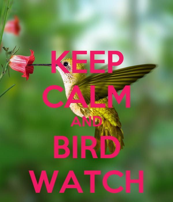 KEEP CALM AND BIRD WATCH