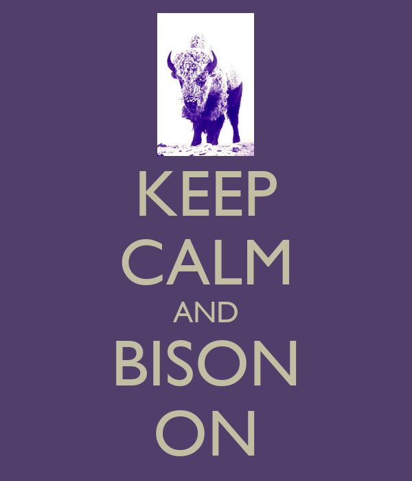 KEEP CALM AND BISON ON