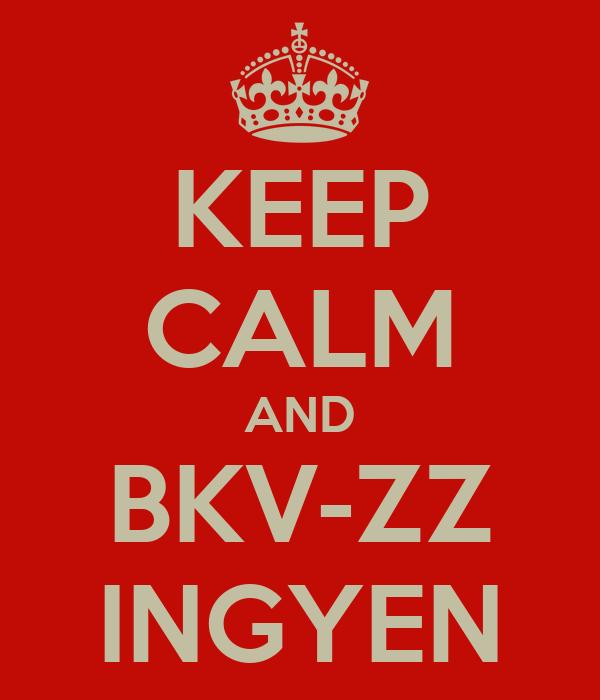 KEEP CALM AND BKV-ZZ INGYEN