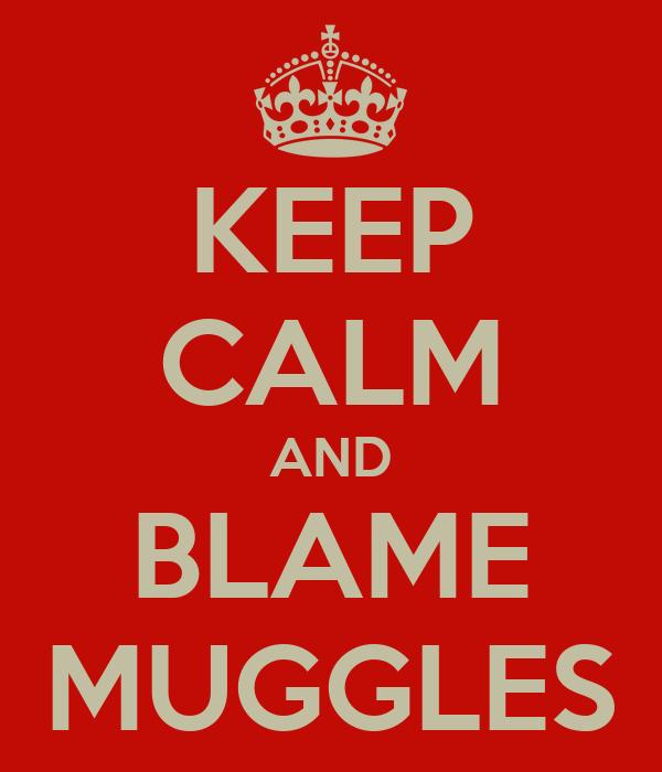 KEEP CALM AND BLAME MUGGLES