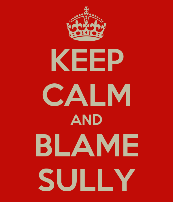 KEEP CALM AND BLAME SULLY