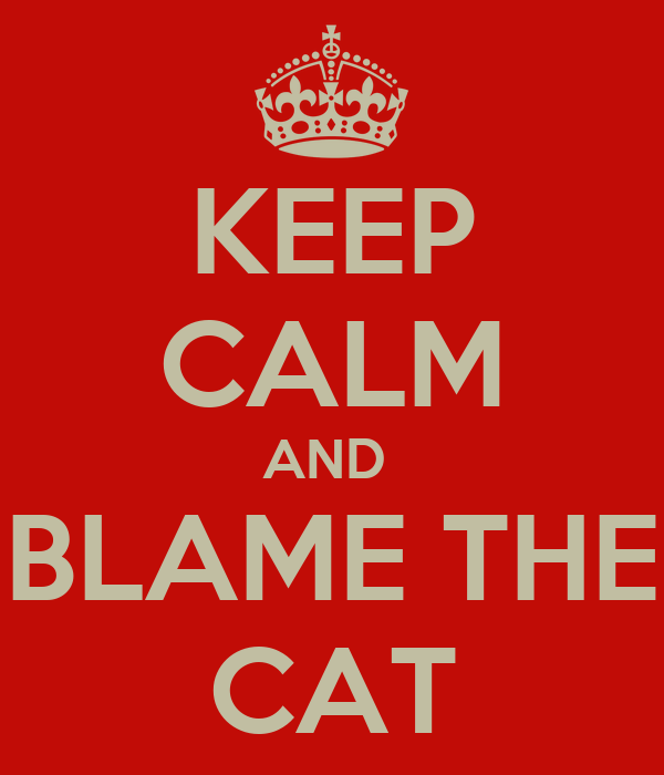 KEEP CALM AND  BLAME THE CAT