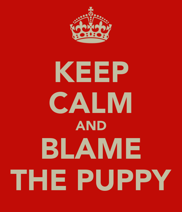 KEEP CALM AND BLAME THE PUPPY
