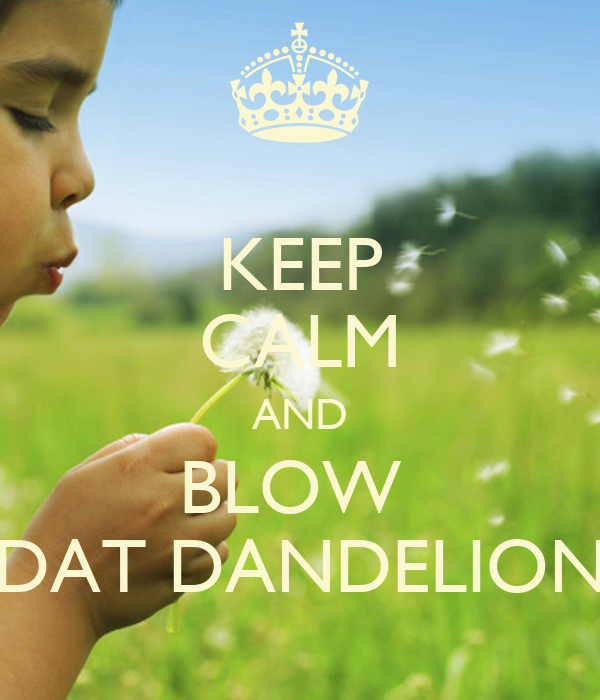 KEEP CALM AND BLOW  DAT DANDELION