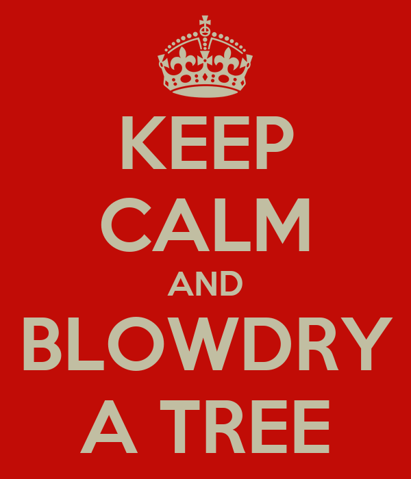 KEEP CALM AND BLOWDRY A TREE