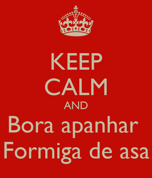 KEEP CALM AND Bora apanhar  Formiga de asa