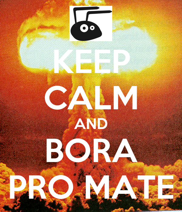KEEP CALM AND BORA PRO MATE
