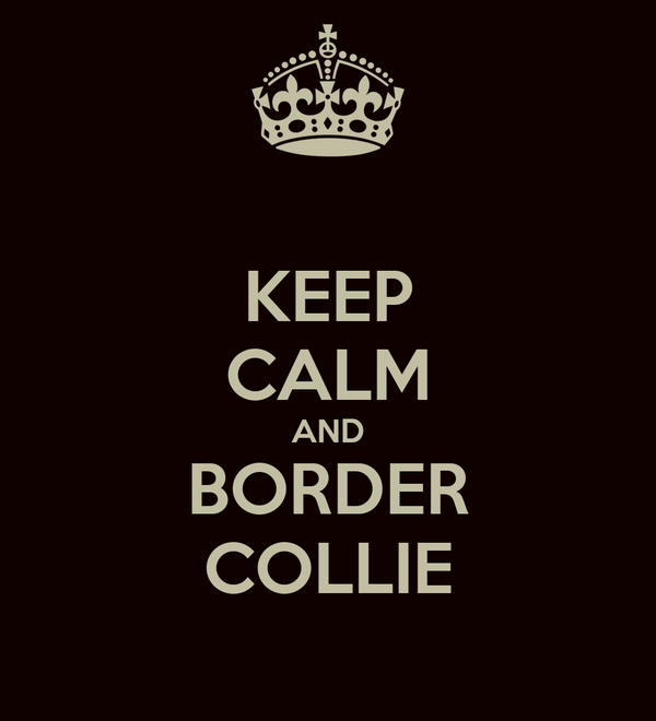 KEEP CALM AND BORDER COLLIE