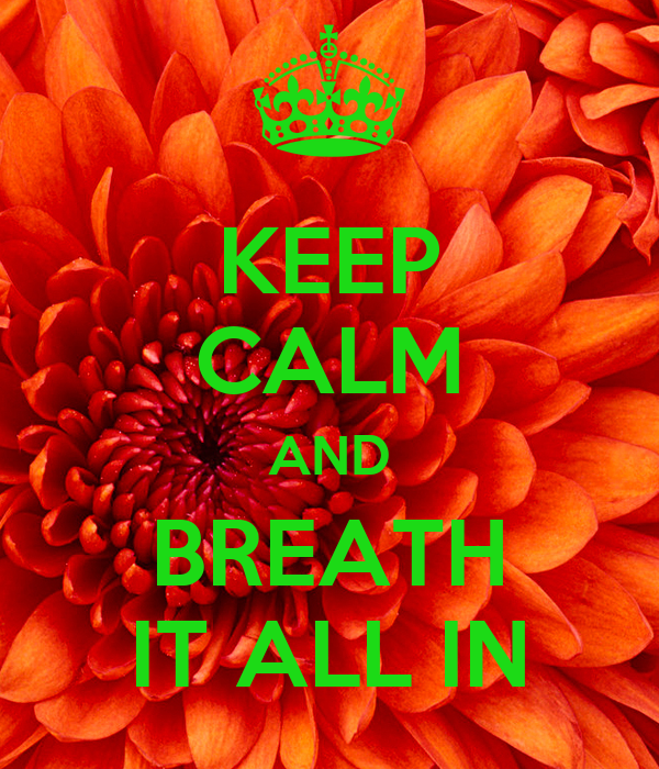 KEEP CALM AND BREATH IT ALL IN