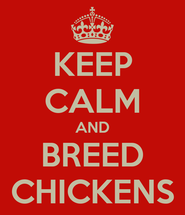 KEEP CALM AND BREED CHICKENS