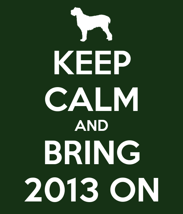 KEEP CALM AND BRING 2013 ON
