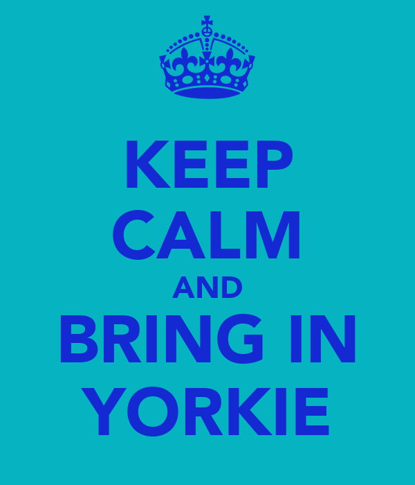 KEEP CALM AND BRING IN YORKIE