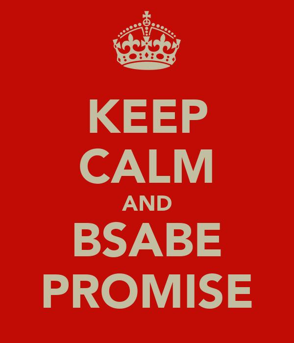 KEEP CALM AND BSABE PROMISE