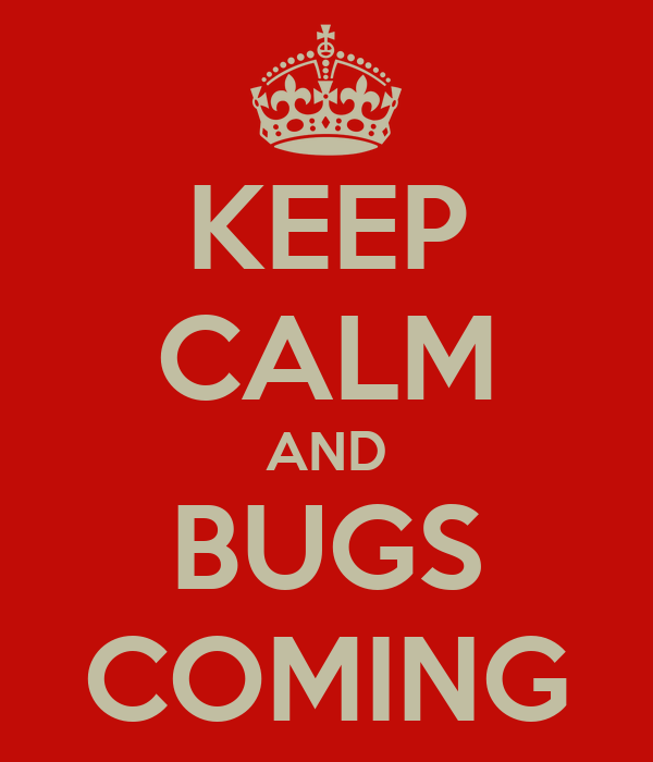KEEP CALM AND BUGS COMING