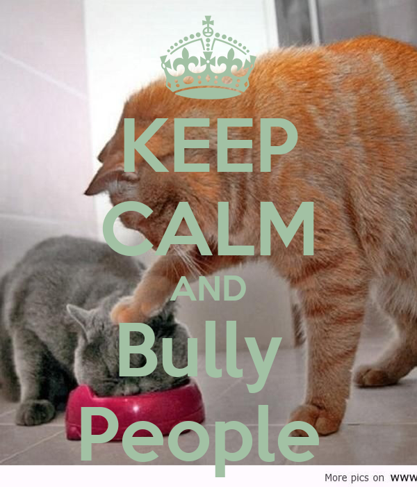 KEEP CALM AND Bully  People