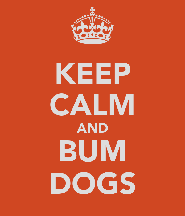 KEEP CALM AND BUM DOGS