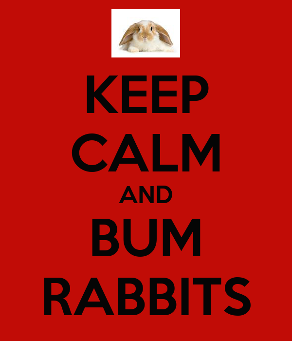 KEEP CALM AND BUM RABBITS