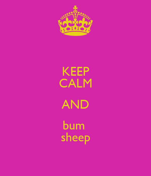 KEEP CALM AND bum  sheep