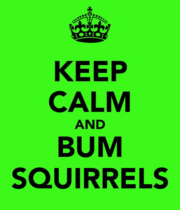 KEEP CALM AND BUM SQUIRRELS