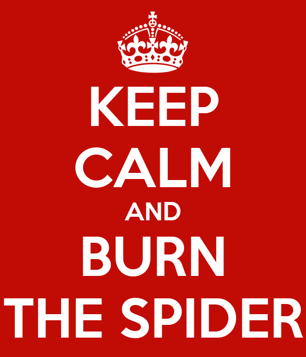 KEEP CALM AND BURN THE SPIDER