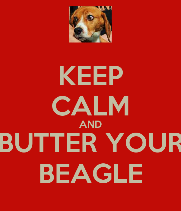 KEEP CALM AND BUTTER YOUR BEAGLE