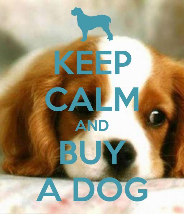 KEEP CALM AND BUY A DOG