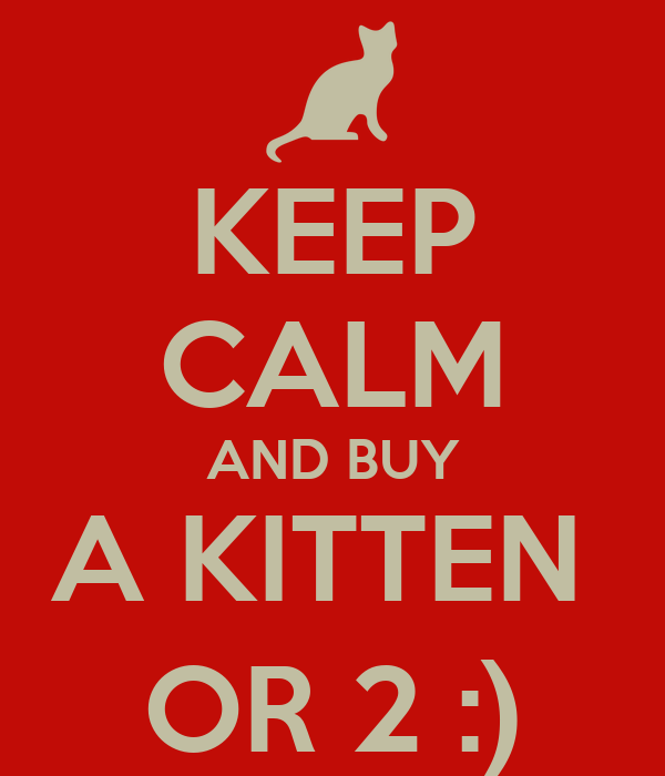 KEEP CALM AND BUY A KITTEN  OR 2 :)