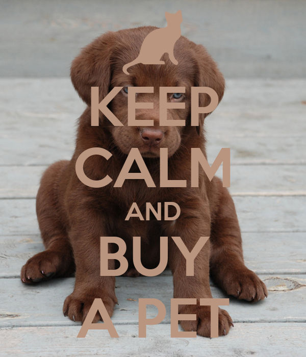 KEEP CALM AND BUY A PET