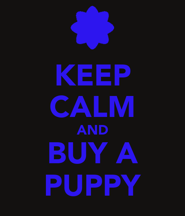 KEEP CALM AND BUY A PUPPY