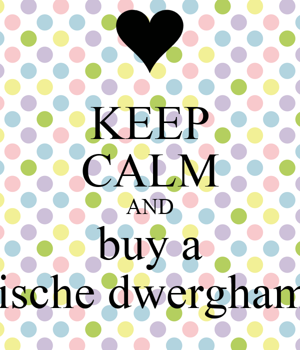 KEEP CALM AND buy a russische dwerghamster