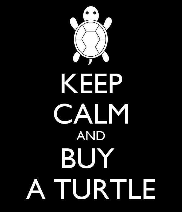 KEEP CALM AND BUY  A TURTLE