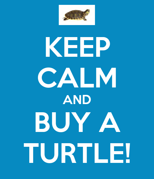 KEEP CALM AND BUY A TURTLE!