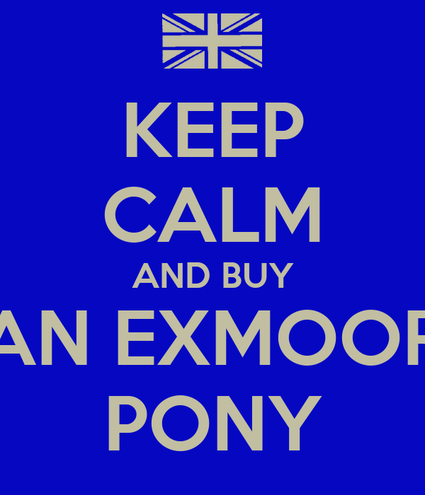 KEEP CALM AND BUY AN EXMOOR PONY