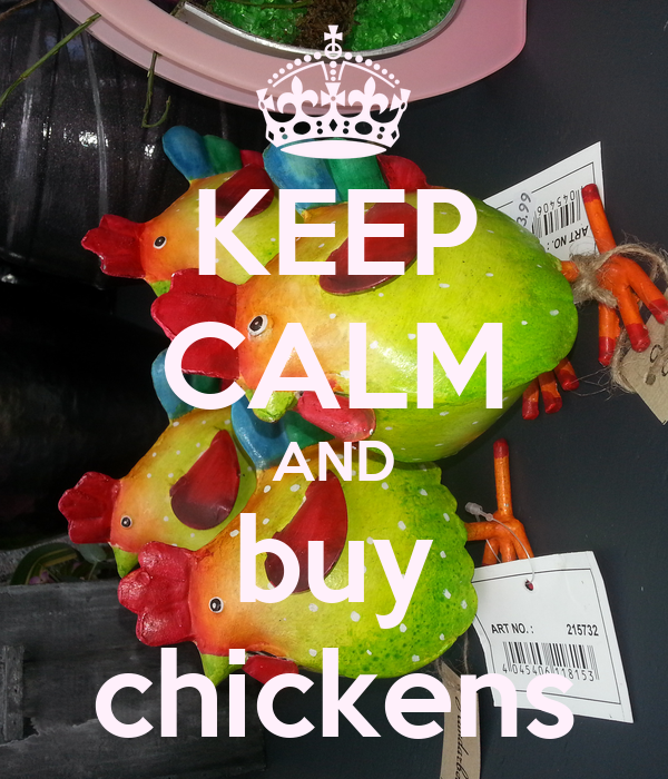 KEEP CALM AND buy chickens