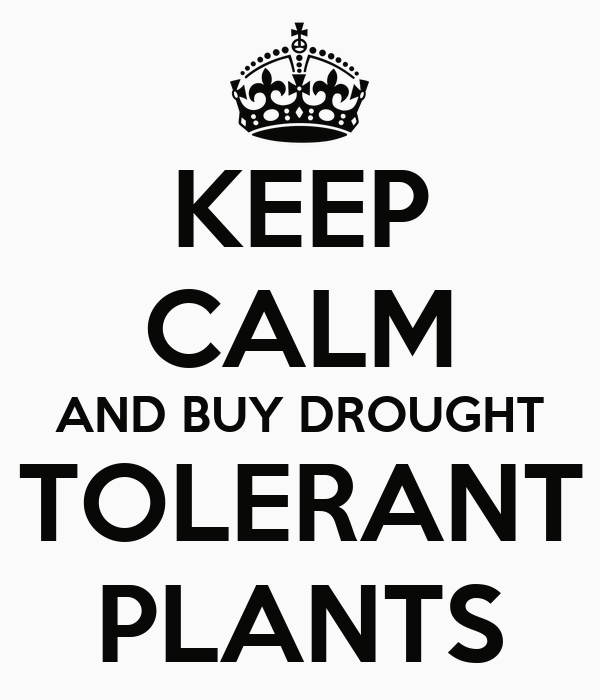 KEEP CALM AND BUY DROUGHT TOLERANT PLANTS
