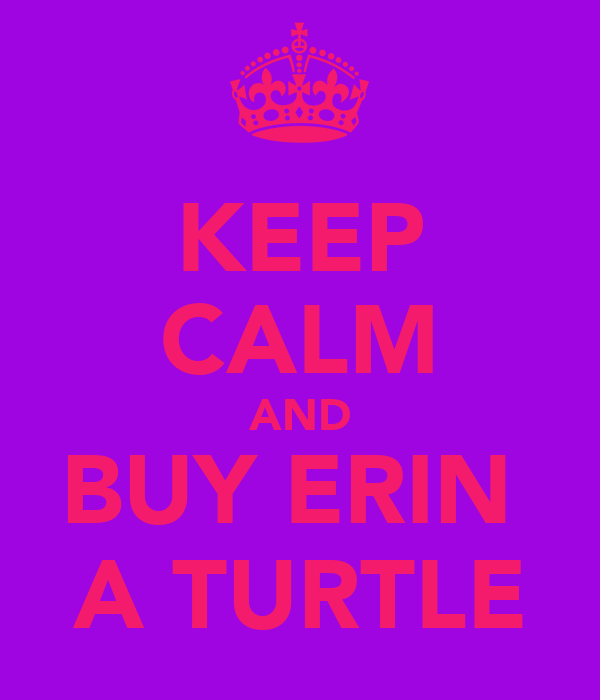 KEEP CALM AND BUY ERIN  A TURTLE