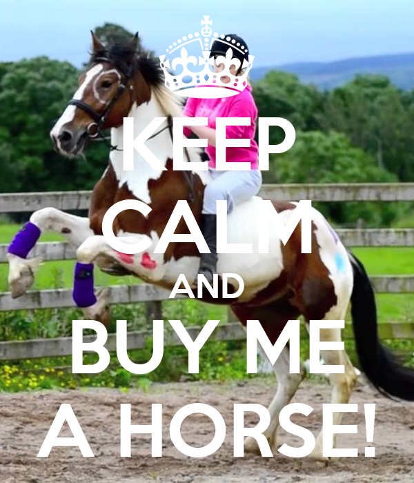 KEEP CALM AND BUY ME A HORSE!