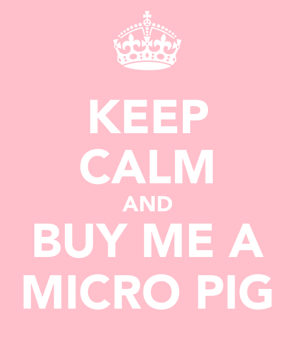 KEEP CALM AND BUY ME A MICRO PIG