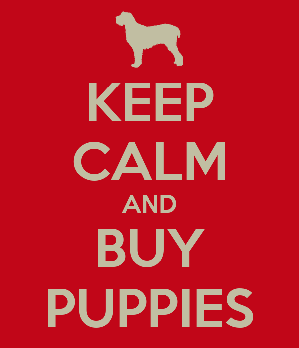 KEEP CALM AND BUY PUPPIES