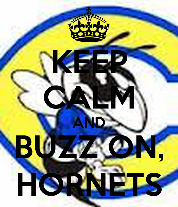 KEEP CALM AND BUZZ ON, HORNETS