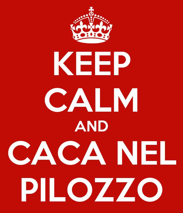 KEEP CALM AND CACA NEL PILOZZO