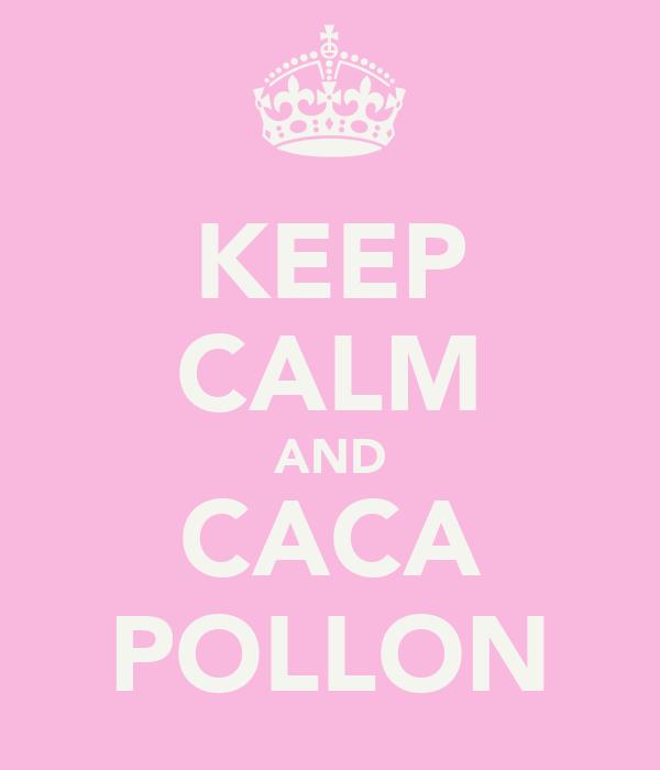 KEEP CALM AND CACA POLLON