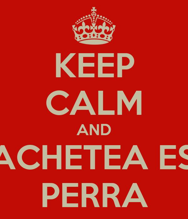 KEEP CALM AND CACHETEA ESA PERRA