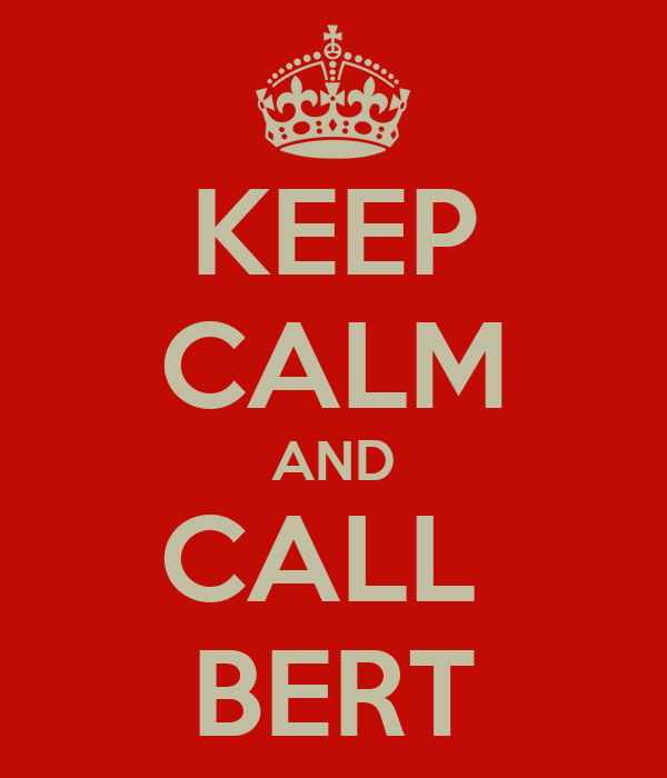 KEEP CALM AND CALL  BERT