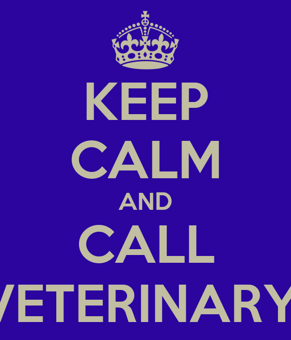 KEEP CALM AND CALL EQUITAIT VETERINARY PRACTICE