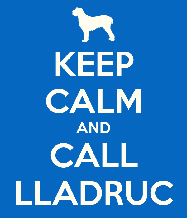 KEEP CALM AND CALL LLADRUC